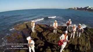 """Los Vendavales de Adan Meléndez  """"Mi Gordita"""" (Video Oficial 2014)"""