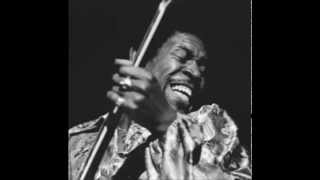 Luther Allison - An Old Sweet Song