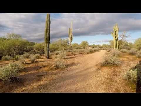 5k Loop at McDowell Mountain Regional Park, Scottsdale AZ