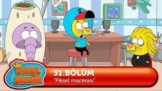 KRAL ŞAKİR: Piksel Macerası - 31. Bölüm (Çizgi Film)