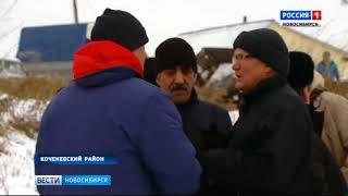 Предприниматель в Коченёвском районе завалил село отходами скотобойни