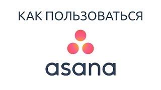 Управление проектами в Asana. Обучение на русском языке