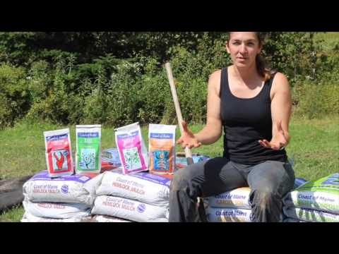 Adding Alfalfa Meal And Fish Bone Meal To Your Raised Bed