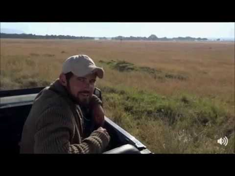 Safari Live Face Book Live : Scott in the Masai Mara this morning July 12, 2017