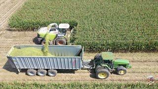 Chopping Corn Silage near Greensburg Indiana
