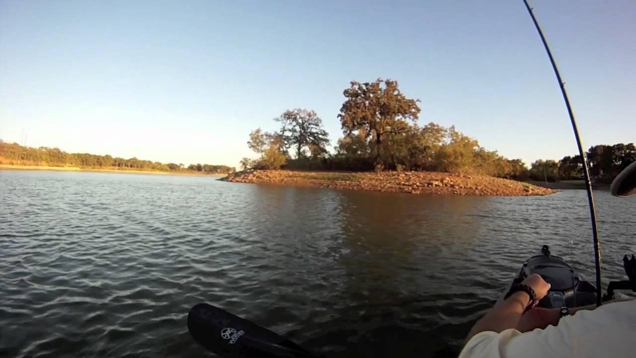 Freshwater fish lewisville tx - Lake Lewisville Tx