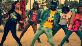 The Rej3ctz   Cat Daddy Starring Chris Brown Video (with Lyrics)