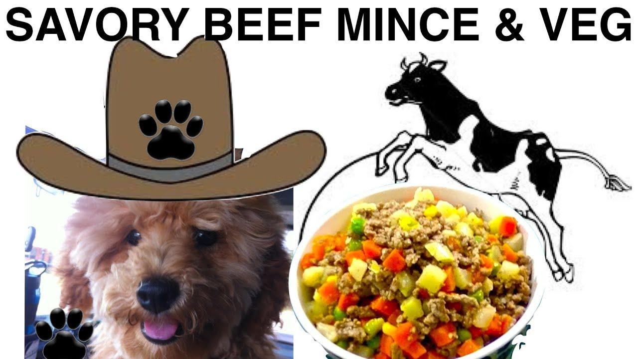 Savory beef mince diy easy dog food dinner a tutorial by cooking savory beef mince diy easy dog food dinner a tutorial by cooking for dogs forumfinder Choice Image