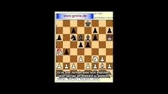Schach für Anfänger. Computer spielt ohne Dame und zwei Türme (Untertitel). Eugen Grinis. Schach