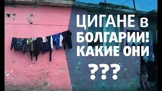 Цигане в Болгарии. Есть с ними проблемы или нет?