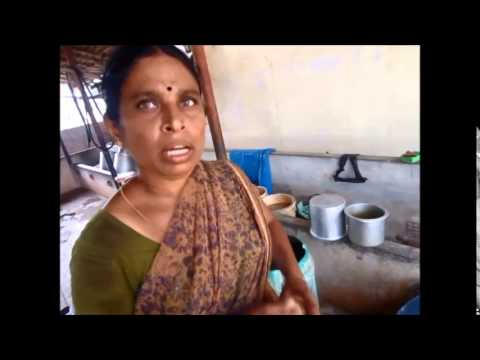 Dairy farm own concentrate feed making | பால் மாட்டு பண்ணை