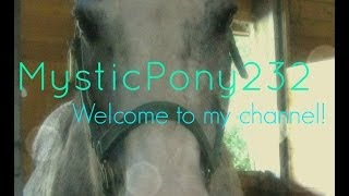 Welcome To My Channel || A World Of Horses