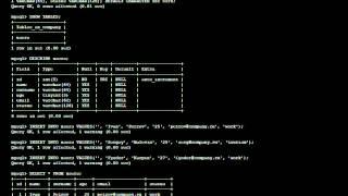 mysql | Linux видеоуроки