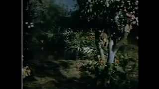 Veerapandiya Kattabomman Song இன்பம் பொங்கும் வெண்ணிலா