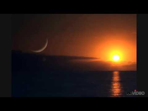 Porter Robinson // Above and Beyond - Sun and Moon Language (Kane Michael Smashup)