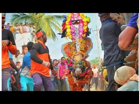 Hori habba_Basapura hori habba_bull catching videos_ಬಸಾಪುರ ಹೋರಿ ಹಬ್ಬ_hatti habba_hori habba 2019....
