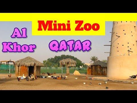 Zoo in Al Khor Doha Qatar