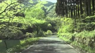 [車載動画]広島県道296号吉和戸河内線 狭隘区間 その1