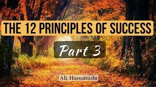 The 12 Principles of Success [Part 3] - Ali Hammuda