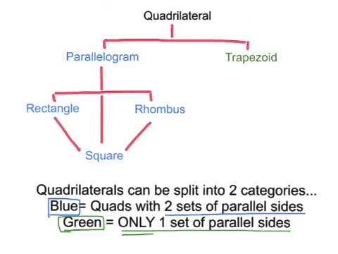 Math 7 quadrilateral family tree - YouTube