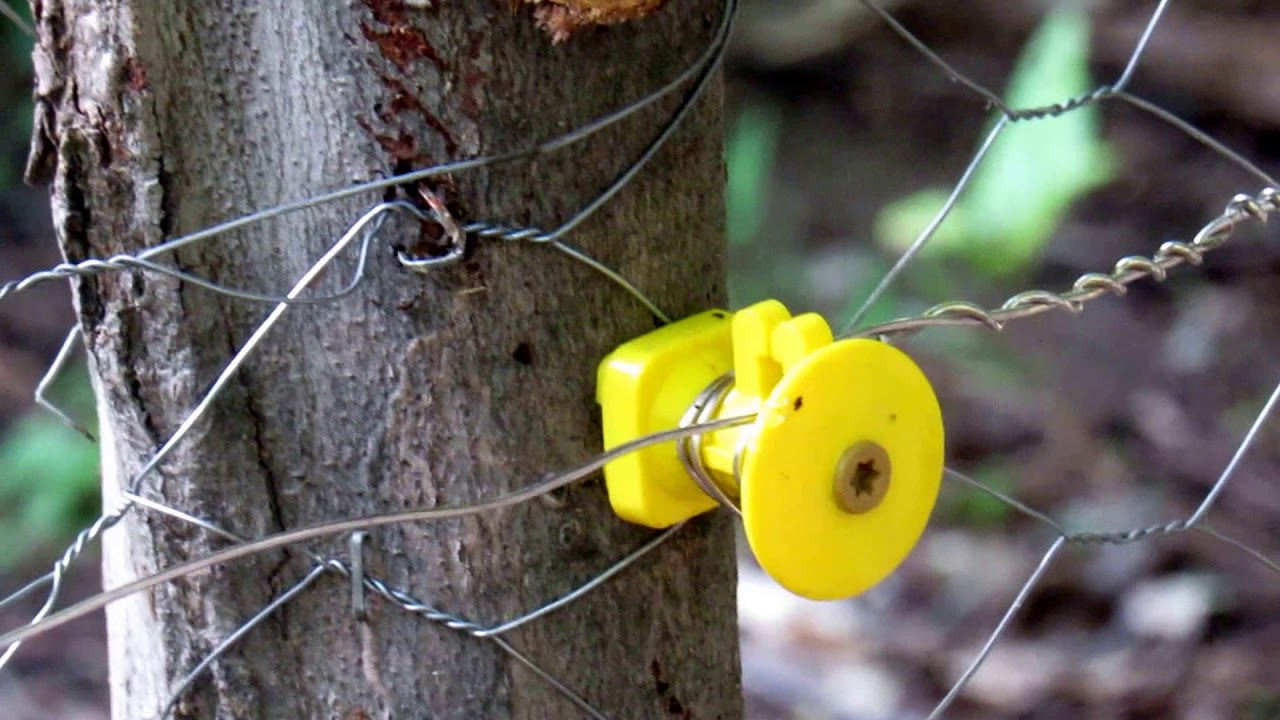 Solar powered Electric fence for your garden to keep the ...