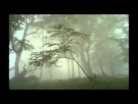 Giovanni Valentini - Sonata à 5. Forgotten Early Baroque Music