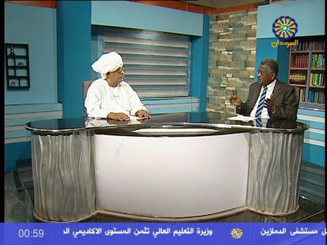 Interview: Former Sudanese Irrigation Minister on the GERD