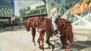 Stephen rides a War Horse!