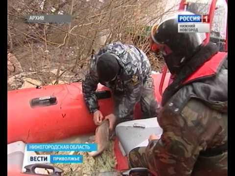 запреты на ловлю раков в нижегородской области
