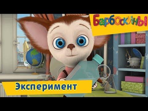 Эксперимент 🔬 Барбоскины