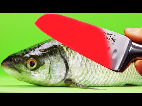 EXPERIMENT Glowing 1000 degree KNIFE VS FISH Herring