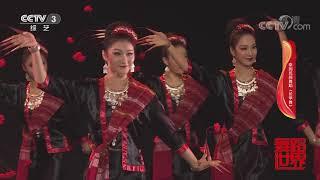 [舞蹈世界]泰国民间舞蹈《长甲舞》 表演:广西艺术学院舞蹈学院 2016级表演与教育专业女班| CCTV综艺