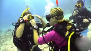 PADI Open Water Diver video