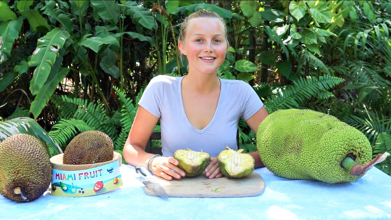 How To Tell When Jackfruit is Ripe PLUS 3 Fun Ways to Eat It! - YouTube