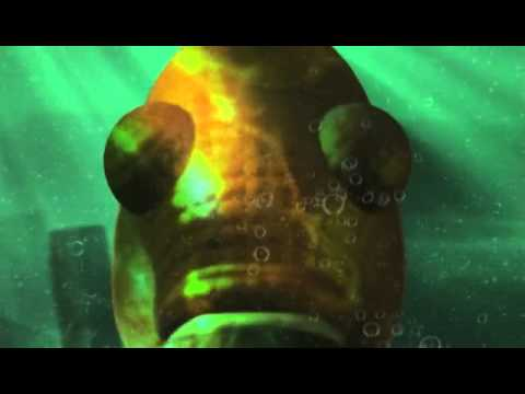 A Mild - Fish
