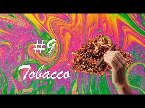 The History Of Tobacco [HD]