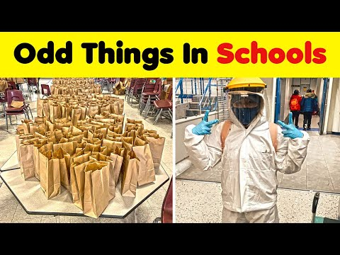 Odd Things You Don't See In Schools Everyday