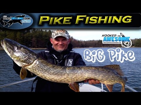 Insane!! Pike Fishing with Lures ft. Kanalgratis.se | TAFishing