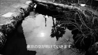 【新宿ララバイ】 斉藤和義/唄/ のてつ