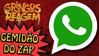 Baixar GRINGOS REAGEM - GEMIDÃO DO ZAP