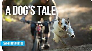 A Dog's Tale | SHIMANO