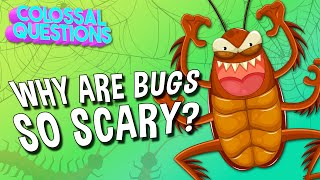 Why Are Bugs So Scary? | COLOSSAL QUESTIONS
