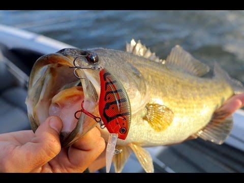 Fishing Legendary Lake Guntersville!!