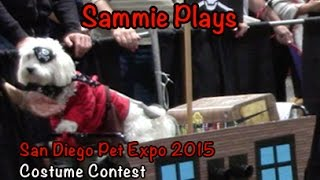 The San Diego Pet Expo Costume Contest 2015 SP #21