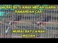 Murai Batu Anak Medan Kuasa Juara Di Ramadhan Cap  Medan   Mp3 - Mp4 Download