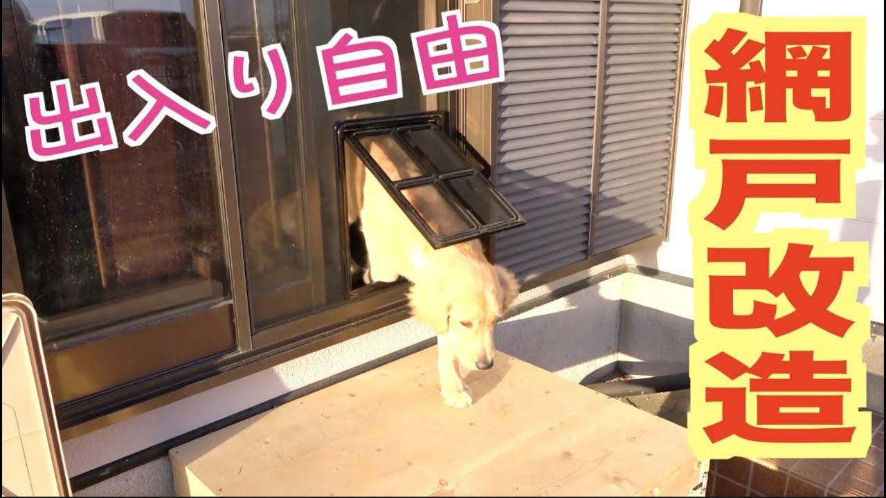 愛犬が自由に出入り出来るように家の窓を改造する!! - YouTube