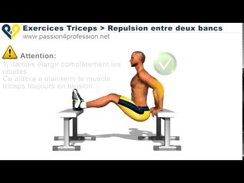 Exercices Musculation Triceps Repulsion 2 bancs - YouTube 44879948afb