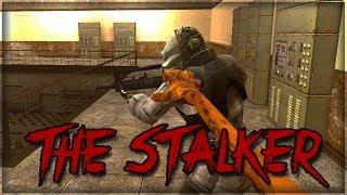 The Stalker |