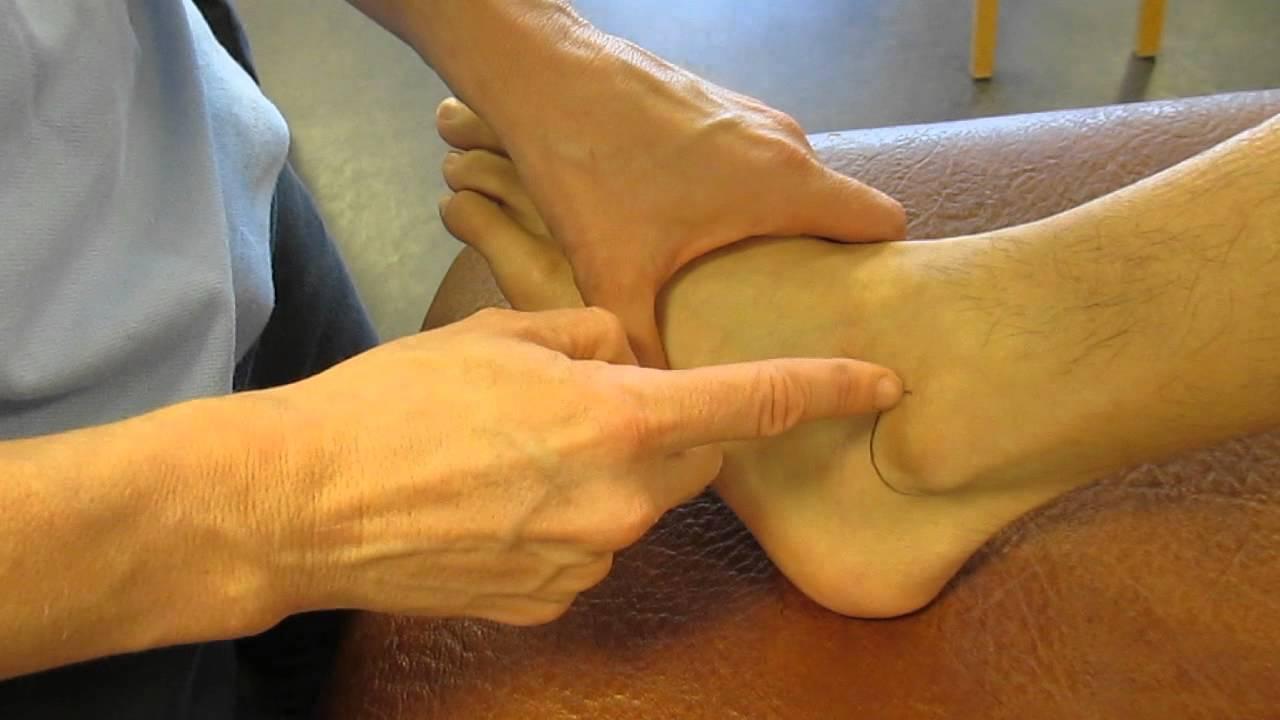 Lateral Malleolus Fibula Ankle Palpation Youtube