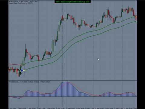 Black dog forex trading system download